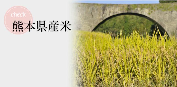熊本県産米100%使用